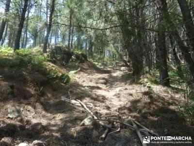 Pinares de Piedralaves;casillas pueblo bastones de senderismo rutas navacerrada